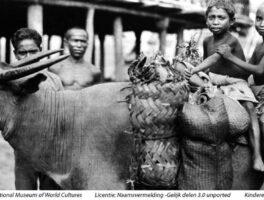 Indisch kind in 1850 – Saïdjah en Adinda